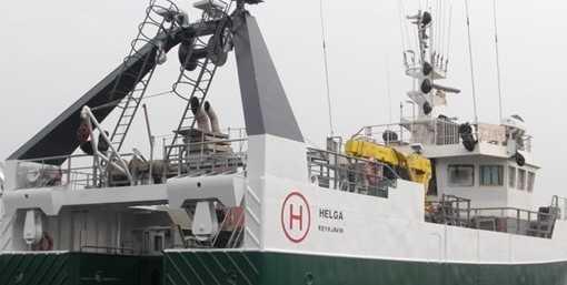 HELGA RE-49 - Hausmynd